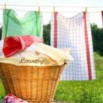 Waschmaschine riecht