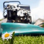 Warum funktioniert der Elektro Rasenmäher nicht mehr