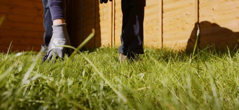 Tipp 1. Den Rasen von Unrat befreien