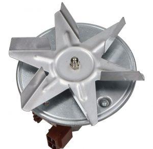 Backofen Motor